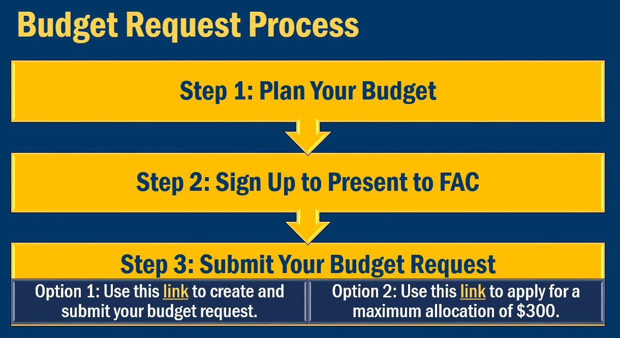RSO Budget Request Steps